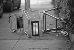 fallen (nocklebeast) Tags: nrd cart shoppingcart santacruz scphoto ca usa cartl2013229 b1opentrue leicasummicron90mmf20apoasph