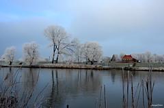 Winter Landscape (JaapCom) Tags: jaapcom winter wintertime ripe river trees water ijssel landscape landed landschaft overijssel zalk natural naturel