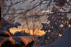 Morgenstimmung (Sandsteiner) Tags: sonnenaufgang sunrise winter winterlandschaft schnee gohrisch papststein elbsandsteingebirge sandsteiner