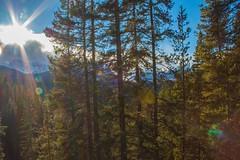 Mountain Adventures (kristaleebaptist) Tags: mountains rockymountains sun sky trees alberta nature canada canon scenic bright light outside outdoors wild wilderness hike travel