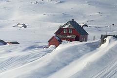 Finse, Winter wonderland - Norway (Ingunn Eriksen) Tags: finse hordaland norway winter winterwonderland winterlandscape redhouse snow nikond750