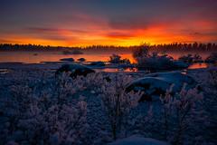 colors in the cold (SeALighT!) Tags: sweden sverige schweden lapland lappland arjeplog river sunset trees rocks winter