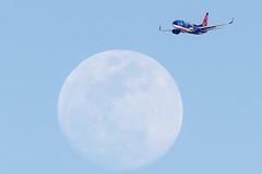 69/365  Sun Country Airlines Boeing 737-752  N714SY flying near the moon (pointnshoot) Tags: canonef600mmf4lisusm suncountryairlines boeing737 b737 n714sy moon project365