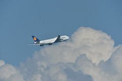 Lufthansa / D-ABYF / B747-8 (Torasan Photography) Tags: cloud weather japan airport place time outdoor aircraft aviation sunny bluesky jp transportation  daytime boeing airlines  kanagawa lufthansa  kawasaki b747   hanedahnd