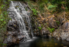 Pedra Ferida (melodft) Tags: trees water waterfall florest cascata penela pedraferida