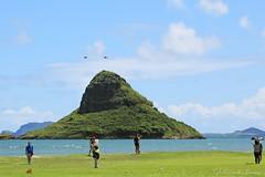09172015_012_ (ALOHA de HAWAII) Tags: hawaii oahu kualoaregionalpark chinamanshatisland