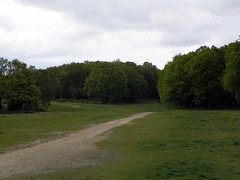 GOC Chorleywood & Chess Valley 006: Chorleywood Common (Peter O'Connor aka anemoneprojectors) Tags: england field grass woodland kodak outdoor grassland chorleywood lnr 2015 localnaturereserve goc chorleywoodcommon gayoutdoorclub z981 kodakeasysharez981 gochertfordshire hertfordshiregoc gocchorleywoodchessvalley