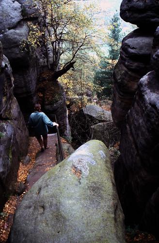 Elbsandsteingebirge (135) Pfaffenstein