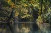 Espejos de otoño (Inmacor) Tags: autumn trees fall rio reflections river spain arboles otoño reflejos albarracín ltytr2 ltytr1 inmacor