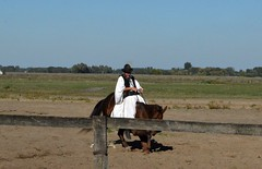 2015_Bugac_0730 (emzepe) Tags: show park panorama horse hat caballo cheval scenery hungary great down horsemen clothes national sit knee plain pferd ungarn steppe hungarian tradtional lovas horseman tj 2015 l hongrie puszta bugac sz kalap oktber nemzeti alfld bemutat csiks kiskunsg bugacpuszta nagyalfld sksg kiskunsgi lel letrdel lelteti tjkpcsiks