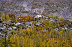 Karimabad, Hunza (Shehzaad Maroof Khan) Tags: trip travel november autumn pakistan tourism yellow landscape nikon valley karakoram hotels hunza karimabad landscapephotography gilgitbaltistan