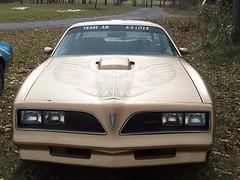 Yetti's 1978 Solar Gold T/A