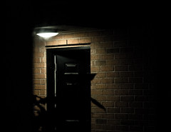 Day 43 (Graydon Armstrong) Tags: door light black brick leaves wall night canon dark photography stm 18135 project365 t6s 18135stm canont6s