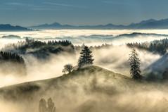 the hill (Klaus Steinert) Tags: autumn mist mountains fog landscape bayern nikon nebel hill herbst explore dust tal allgäu hügel trüb täler d7100 platinumheartaward nebellage herstwetter