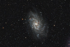 M33 - Triangulumnebel - reworked (cfaobam) Tags: sky canon germany bayern deutschland eos telescope ngc598 350 astrophotography m33 goto astronomy dslr messier eos350d deepspace celestron astrophoto teleskop odenwald astronomie deepsky ed80 astrofoto obernburg skywatcher pixinsight astrofotografie triangulumnebel dreiecksnebel cfaobam cfaobamhome tsflatner