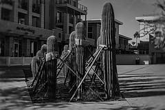 scottsdale 07132 (m.r. nelson) Tags: arizona bw usa southwest monochrome america blackwhite scottsdale wildwest urbanlandscape artphotography thewest mrnelson marknelson newtopographic markinaz
