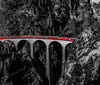 The Thin Red Line (BeNowMeHere) Tags: trip travel red heritage nature forest switzerland blackwhite suisse line unesco viaduct thin albula unescoworldheritage the rhb bernina graubünden landwasser rhaetian filisur berninaexpress rhaetianrailway rhatischebahn rhatische thethinredline 500px unescoworld albularailway ifttt