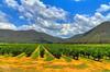IMG_9135_6_7-Edit (Kev Walker ¦ 8 Million Views..Thank You) Tags: sky panorama architecture clouds landscape australia nsw 1855mm archways broke hdr huntervalley bulga hunterregion kevinwalker canon1100d bulgabridge