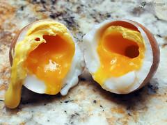 Cracked Soft Boiled Egg (gapey) Tags: eggs fresheggs softboiled pressurecooker steamedeggs backyardeggs instantpot softsteamed easytopeeleggs pressurecookedeggs