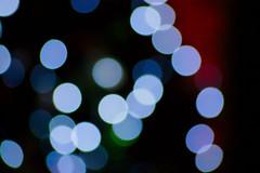 Tree Lights (Troy Shiels) Tags: christmas blue blur closeup night lights nikon pattern indoor christmaslights sigmalens d40