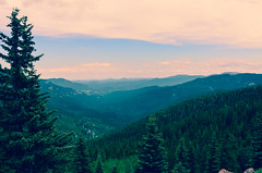 Landscape 2 (joshuaXconlee) Tags: mountain nature forest colorado mtevans inependencepass