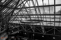 south station-25 (alanschererphotographer) Tags: boston redline train southstation excalator stairs travel transportation alanschererphotographer subway bostonphotographer blackandwhite people reallife truestory