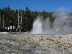 Sawmill Geyser from closer (Annes Travels) Tags: yellowstone wyoming uppergeyserbasin geysers geothermal