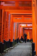 DSC_6063 (okm789911111) Tags: 伏見稻荷神社 千本鳥居 nikon1685