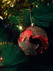 Christmas time is here again! (Lidia Cozar) Tags: christmas navidad felicidad happiness tree arbol xmas green red yellow rojo verde amarillo