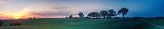 Pan (dolbinator1000) Tags: land scape landscape twilight dusk sun set sunset tree trees field fields sunny sunshine fence fences hill hills hilly cloud clouds cloudy sky
