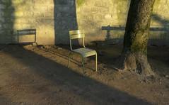 Seul au jardin du Luxembourg (Robert Saucier) Tags: paris jardinduluxembourg luxembourg gravier chaise chair vert green arbre tree mur wall ombres shadows img6112 explorejan302017133 explore