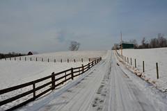 Snowy Landscape (thoeflich) Tags: snow snowfall snowscape snowylandscape