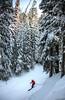 aa-2692 (reid.neureiter) Tags: skiing vail colorado mountains snow snowskiing alpineskiing sport sports wintersports