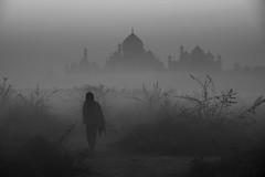 Taj in WInter (Ravikanth K) Tags: 500px agra taj mahal india uttarpradesh morning fog foggy monument people travel man walking backside outdoor winter cold unesco unescoworldheritagesite architecture symbol love