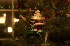 Christmas Break 2016-2017 (Jazmin Marie Neri) Tags: bubbles horses ranchlife ranch barn christmas christmaslights bokeh bokeheffect smile chocolatestrawberries chocolate strawberries sharrisberies bookshelf books packers cheesehead cheese head light flash swissmiss hotchocolate chipsahoy tabby cat orangecat grass waterdrops branches purple goal birdsnest nest leaves sillystring silly string shadows ornaments disney santa cinderellascastle cinderella claus santaclaus minniemouse mickeymouse minnie mickey mouse candles mug
