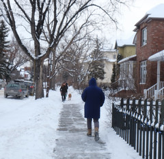The Winter Blues (Sherlock77 (James)) Tags: calgary streetphotography winter snow people man woman dog