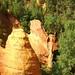PICT6095 - Provence _ Roussillon