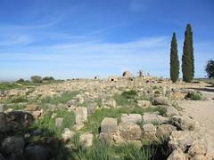 Ruins, view to Capitoline Temple, Volubilis, Morocco (Paul McClure DC) Tags: morocco almaghrib fèsmeknèsregion volubilis jan2017 roman architecture historic scenery