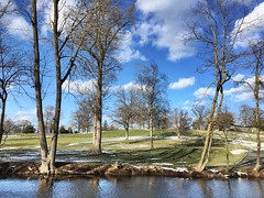 Golfing Geese (Tim Loesch) Tags: golf geese sky clouds nj mercercounty newjersey