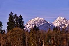 Mountains on Monday (robinlamb1) Tags: landscape mountainscape mountain mountains goldenearsmountains mapleridge bc outdoor trees bluesky whispycloud snow peaks