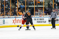 "Missouri Mavericks vs. Allen Americans, March 10, 2017, Silverstein Eye Centers Arena, Independence, Missouri.  Photo: © John Howe / Howe Creative Photography, all rights reserved 2017 • <a style=""font-size:0.8em;"" href=""http://www.flickr.com/photos/134016632@N02/33023732740/"" target=""_blank"">View on Flickr</a>"