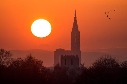 La Cathédrale de Strasbourg au coucher du soleil