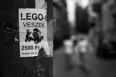 I sell Lego (parenthesedemparenthese@yahoo.com) Tags: bw blackwandwhite city couple dem detail men monochrome nb noiretblanc streetphotgraphy textures annonce blur buda budapest byn canoneos600d deepoffield dehors dop ef50mmf18ii exterieur flou hommes outdoors pdc poster profondeurdechamp sale streetphotographie vente