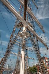Sail Amsterdam 14 (stevefge) Tags: sky netherlands amsterdam ships nederland mast nederlandvandaag sail2015