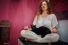 Meditazione (Marianna ) Tags: cat blackcat meditazione gattonero