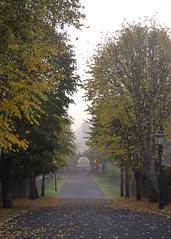 Spot Hillsborough fort down the avenue (Lisangel) Tags: autumn fog nikon fort foggy northernireland avenue hillsborough countydown