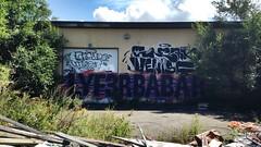 G.L SNEAK VENISE LYFER BABAR (RSBENCH) Tags: bench graffiti montreal venise rs babar gl sneak 2015 lyfer rsbench