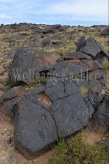 30095293 (wolfgangkaehler) Tags: old rock asian ancient asia desert mongolia centralasia petroglyph gobi blackmountains petroglyphs ibex mongolian gobidesert southernmongolia