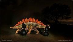 35 (geoff_sharpe) Tags: lightpainting bondi stegosaurus sculptures pixelstik