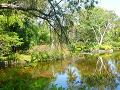 Garden of the groves, The Bahamas